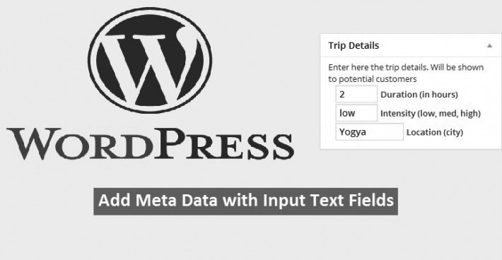 "Complete WordPress Tutorial ""Add meta data with input text"""
