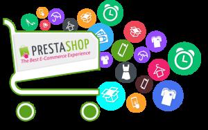 custom IT webshop